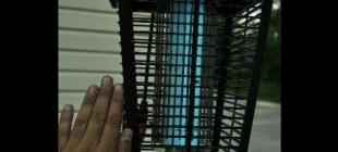 What to consider when shopping for the best electric bug zapper